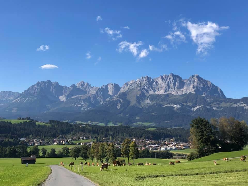 DIT - Deutsch-Institut Tirol